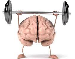 Нагружайте мозг!