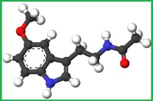 Мелатонин - гормон молодости