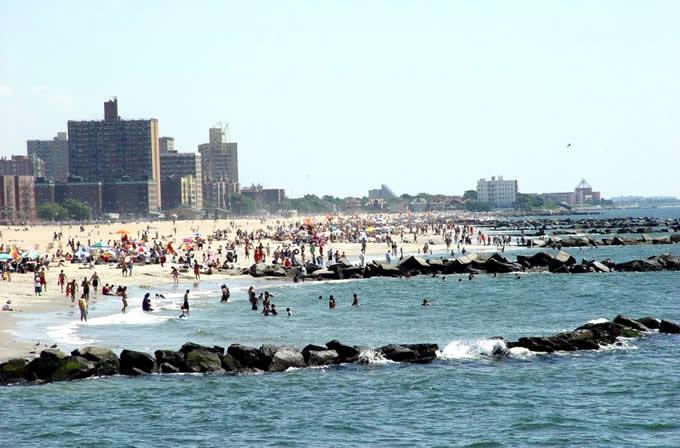 Мухи на пляже Брайтон-Бич.