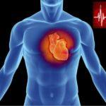 Сердце человека - мотор жизни.