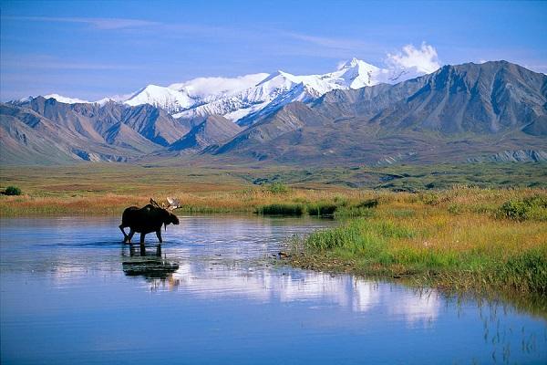 Аляска – 49 штат США
