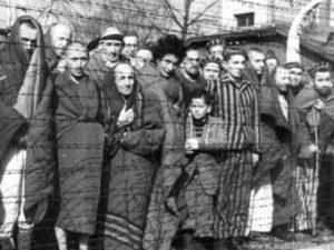 После освобождения